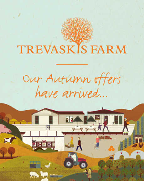 Our autumn offers have arrived!