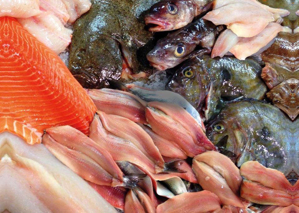 Fish Fayre